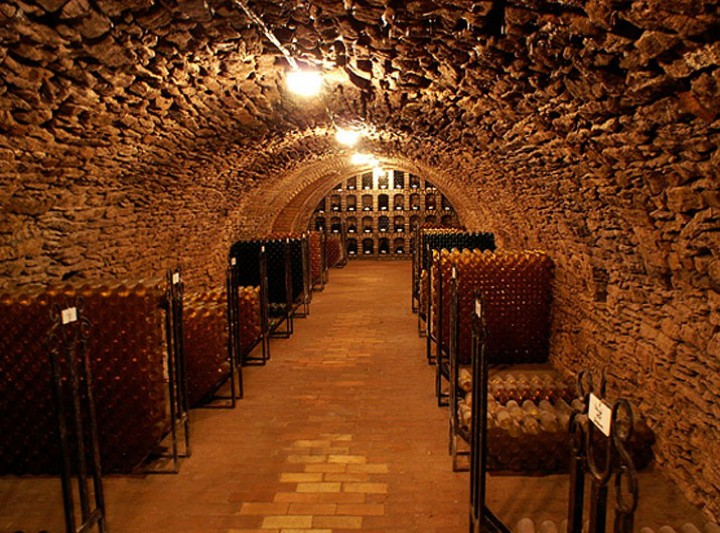 Bozóky Vinery and Wine Museum